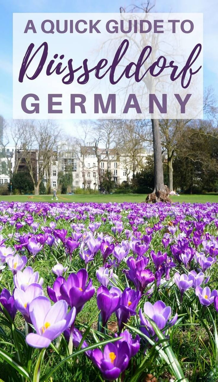 A quick guide to Düsseldorf, Germany. What to do and where to go in Duesseldorf!