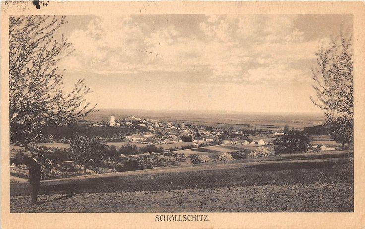 bg18693 czech zelesice schollschitz