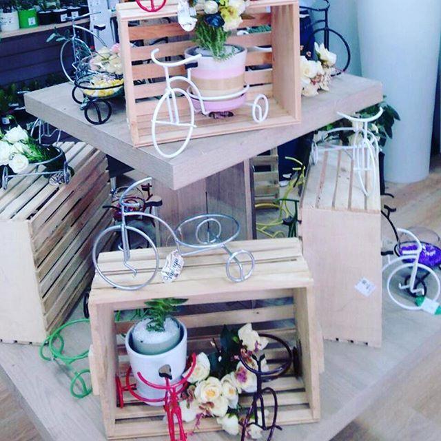 Bicis de todos los colores y estilos en #DecoOutlet PBX 3222023 disfruta decorando tus espacios!!