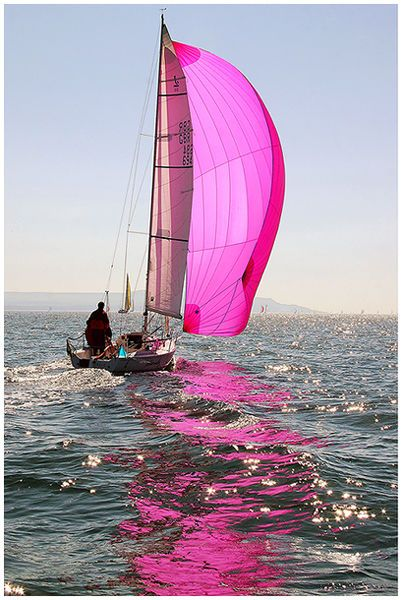 'Pink Champagne' ~ Round the Island Race by Chris Boynton.
