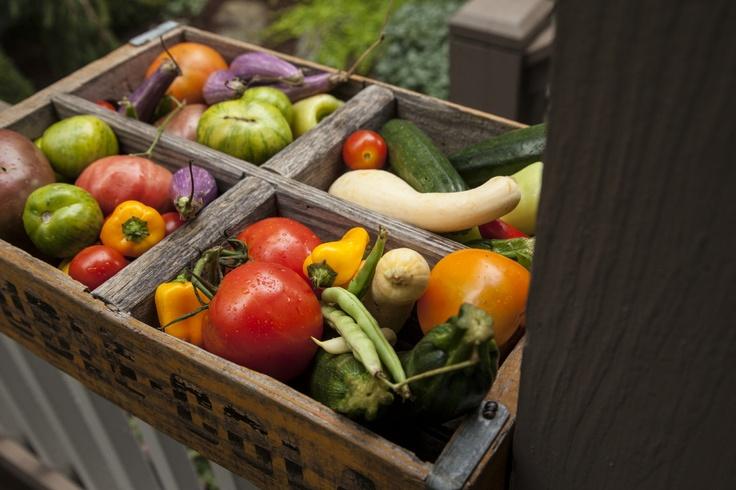 How to Grow a Small Vegetable Garden