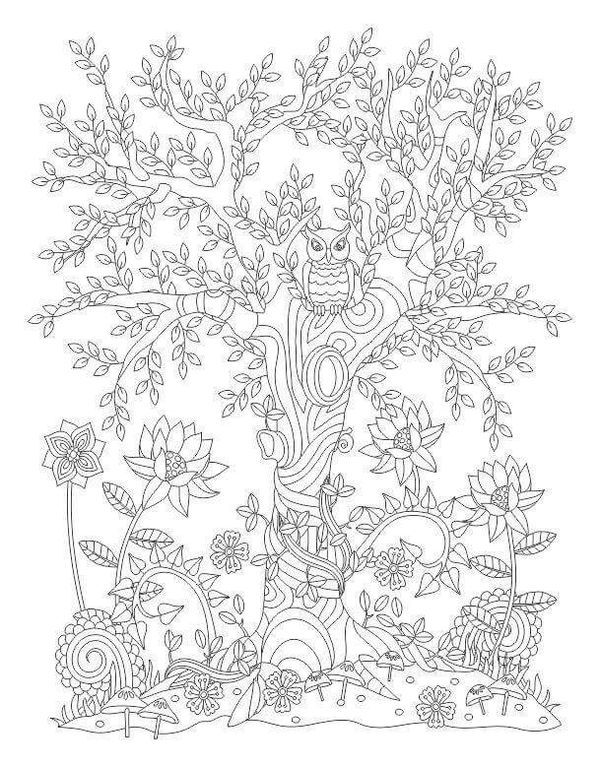 relax with art colouring page owl in a tree - Birch Tree Branches Coloring Pages