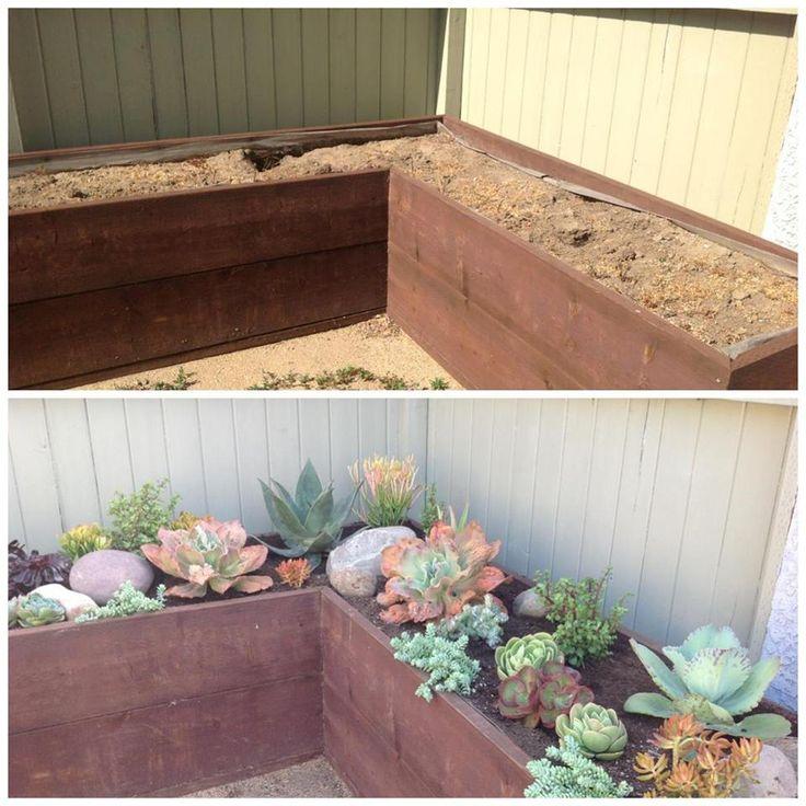 Succulent Landscape job by Simply Succulent https://www.facebook.com/pages/Simply-Succulent/222665291108990