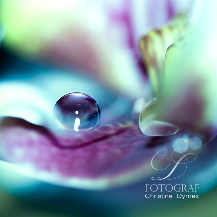 Artistic water drop - Pearl - Limited edition of 10 copies
