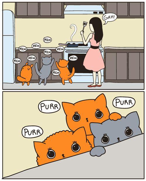 ^..^ purr