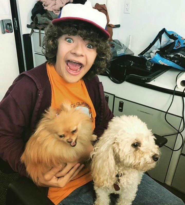 Geaten holding Finn and Joes dogs