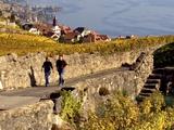Lavaux Vineyard Terraces, Switzerland  (from National Geographic Traveler Magazine)