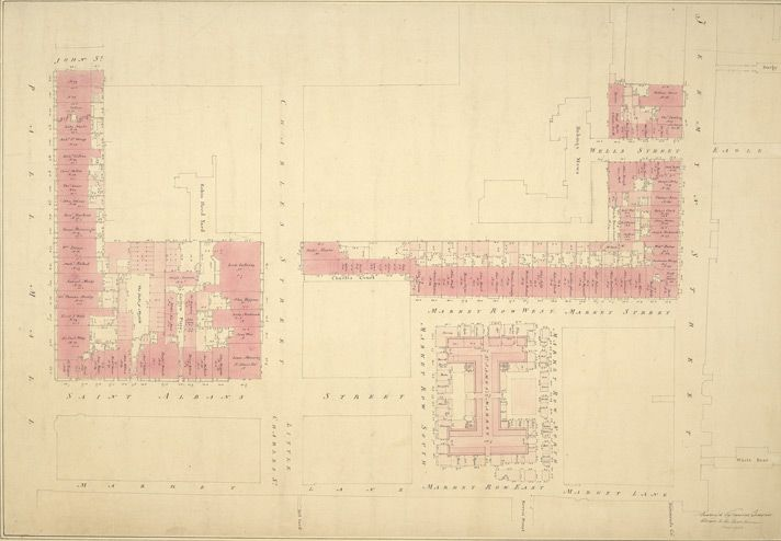 [Drawn plan of part of Pall Mall, north side, St Alban Street, St James' Market &c. as it was in 1794]