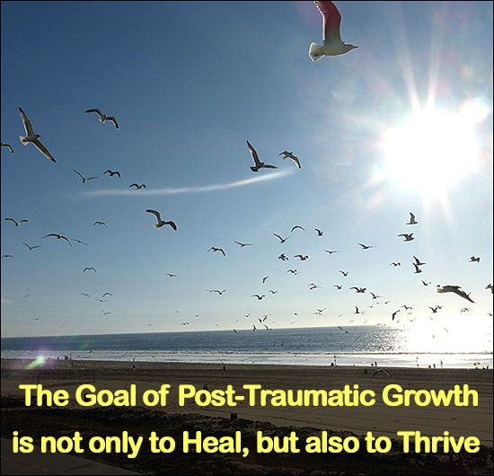 Post-Traumatic Growth is not the opposite of post-traumatic stress (PTSD), but rather a positive psychological change born out of a traumatic circumstance.