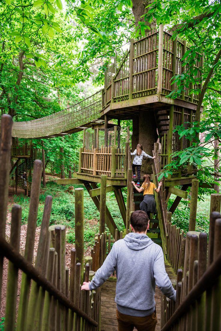 Um parque fantástico criado pelo autor de um livro infantil. Conheça BeWILDe …   – Lugares incríveis