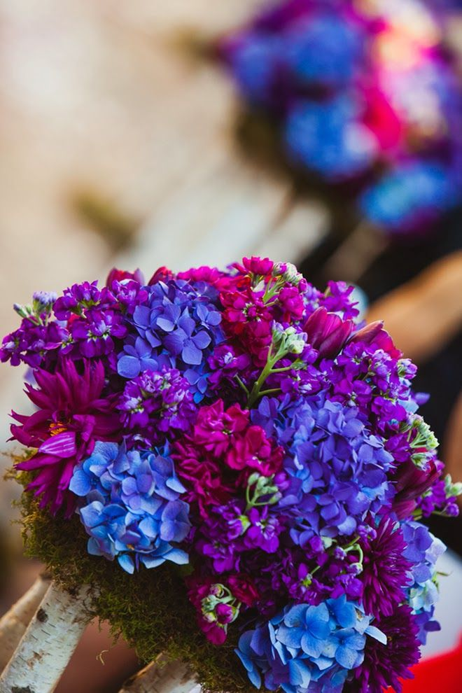 Purples and blues  ~ IQPhoto  | bellethemagazine.com