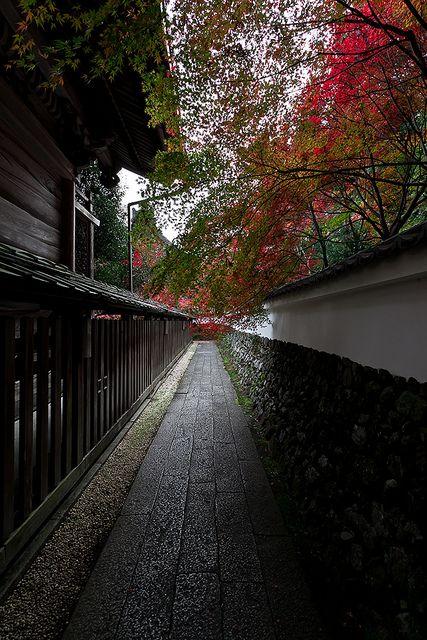 Kyoto, Japan. #japan #Kyoto #travel