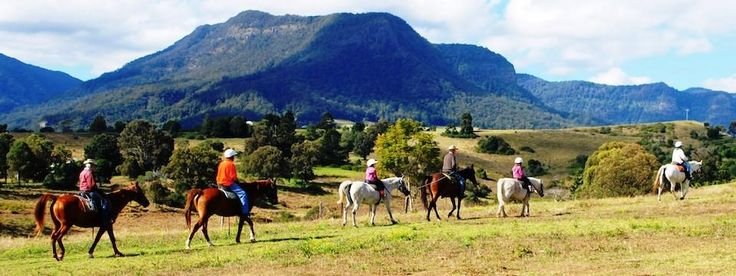Within an hour's drive of Brisbane and the Gold Coast you'll encounter the first of many Scenic Rim attractions and things to do.