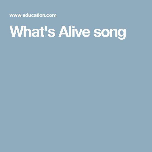 What's Alive song