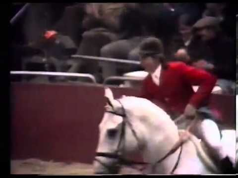 In 1978 21 year old Nick Skelton and Lastic cleared seven feet, seven and five sixteenths of an inch (2.32m).