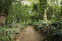 Pathway through the cemetery