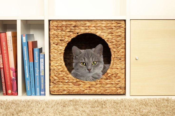 84 best images about kallax regal pimps on pinterest. Black Bedroom Furniture Sets. Home Design Ideas
