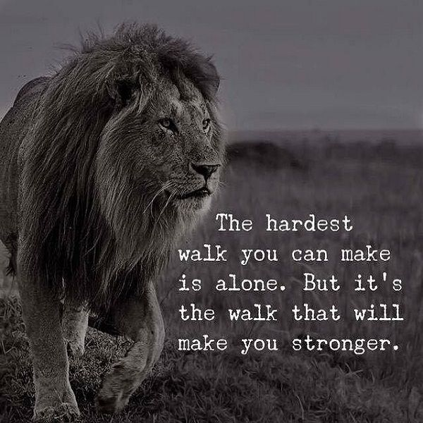 Tired Of Walking Alone I Want A Partner In This Wild Rollercoaster Ride Walking Alone Makes You Strong But Having A P Lion Quotes Warrior Quotes Life Quotes