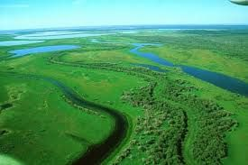 Alberta has a National Park Larger Than Switzerland - Wood Buffalo National Park straddles the border of Northern Alberta and southern Northwest Territories. It was created in 1922 to protect the world's largest herd of roaming Wood Bison, and the park is also home to the last known nesting site of whooping cranes. Canadian's care about nature.