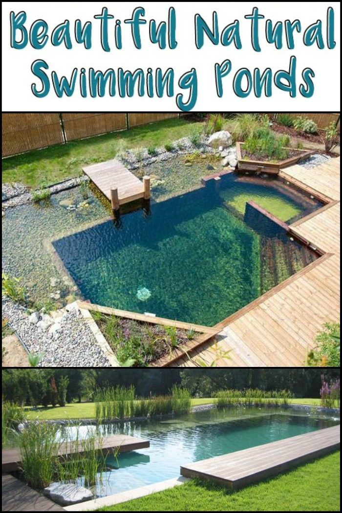 27 Natural Swimming Ponds Inspiration Always Wanted A Pool What A Better Way To Do It Tuin Zwembad Zwembad Vijver Tuinvijver