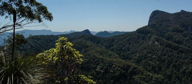 Brummies Lookout walk takes 3-4 hour and offers a unique aspect of Wollumbin close by.  Things to do in Byron Bay - Byron Trails