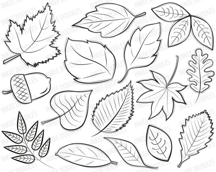 Autumn Leaves Digital Stamps Clipart black by InkeeDoodles