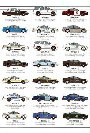 state boys car driver infographic pinterest bears rh pinterest com au