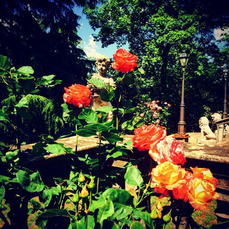 Villa Paradais  Piemonte http://m.casevacanza.it/piemonte/novi-ligure/il-paradiso-di-paradise-1794619 #piedmont #villa #vacanza #italianholidays #iphonesia #mothernature #fabulous #италия #красота #отдых #шоппинг #serravalleoutlet
