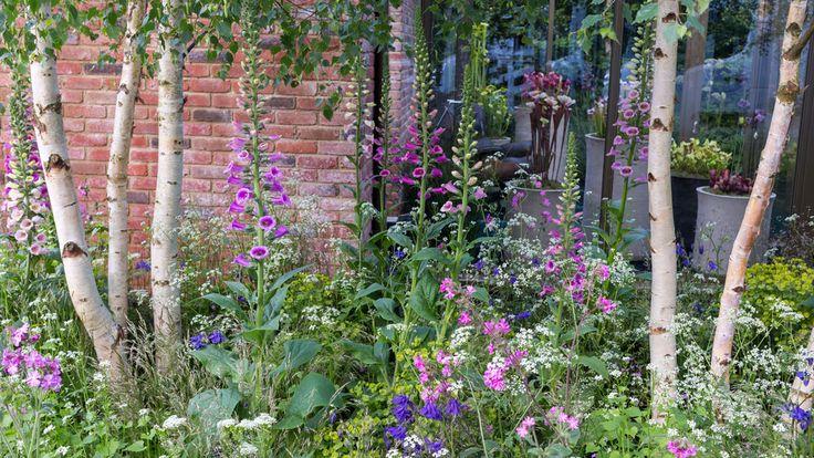 The Hartley Botanic Garden - RHS Chelsea Flower Show 2016 - Designed by Catherine MacDonald