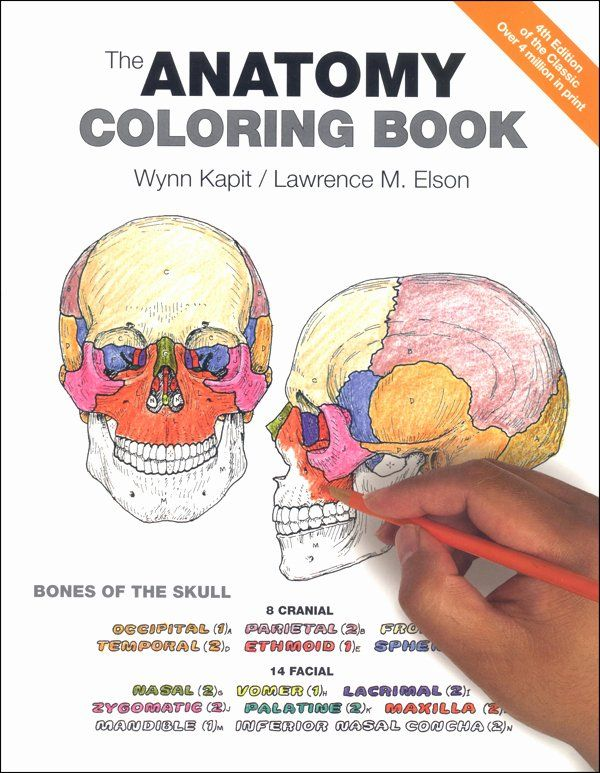 Human Body Coloring Book Best Of Anatomy Coloring Book 4ed Anatomy Coloring Book Coloring Books Christmas Coloring Books