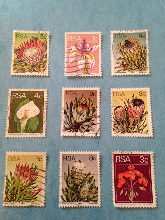 Gorgeous Protea vintage South African definitive stamps as well as iris, calla and geranium. Protea series is from 1977 and was designed by Dick. 9 stamps. $5.95