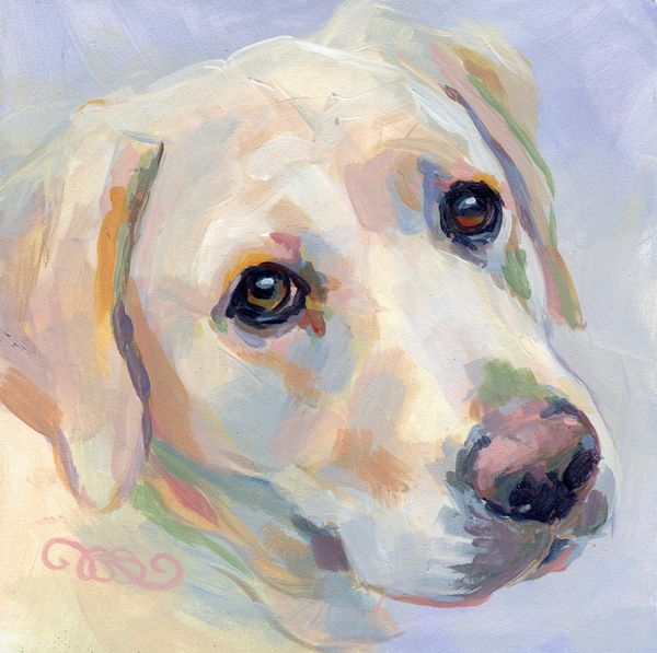 love this color pallett- dog painting