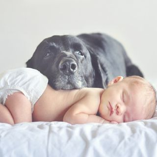 awww I'm definitely having a baby/dog picture with my future kids