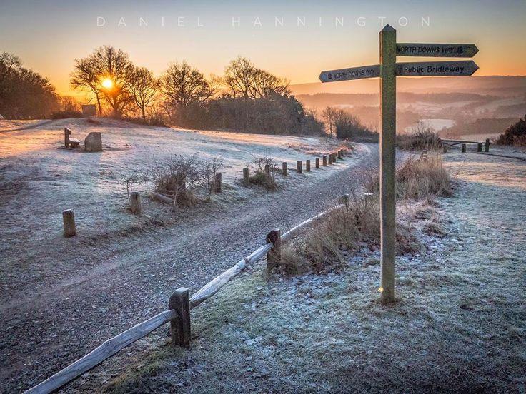 Sunrise in the Surrey Hills - Newlands Corner -Guildford