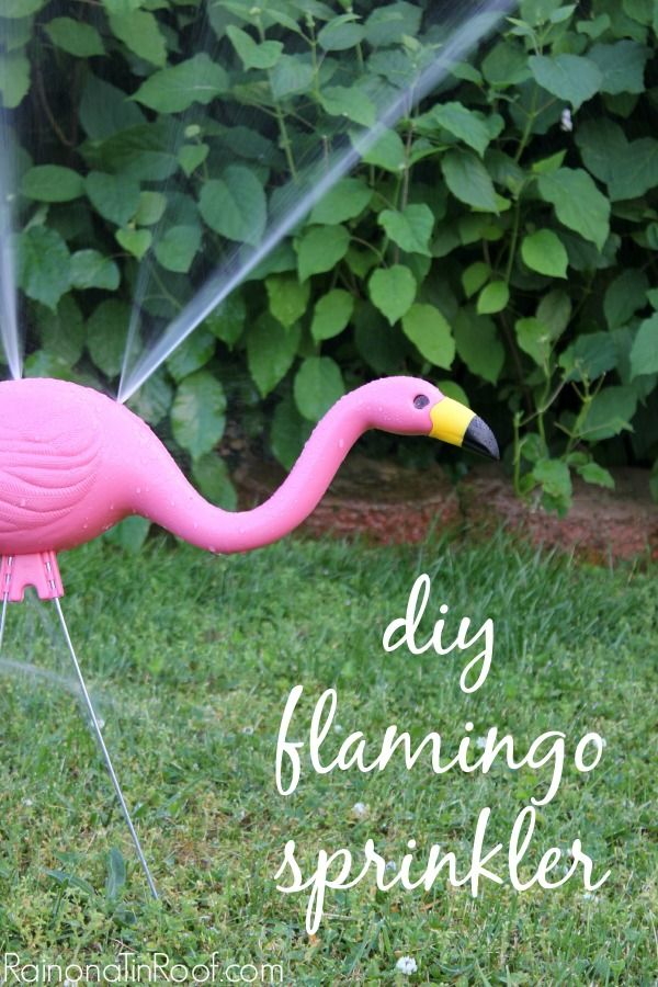 This is so fun and quirky! Super affordable too! DIY Flamingo Sprinkler AND it feeds your plants at the same time!