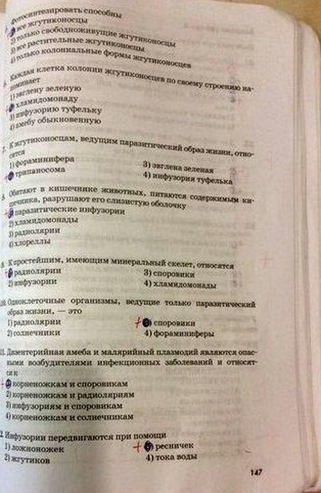 Г.д.з по литературе 11 класс маранцман