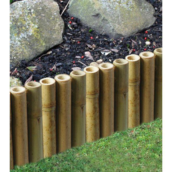 Garden Design Using Bamboo best 25+ bamboo garden ideas ideas on pinterest | bamboo screening