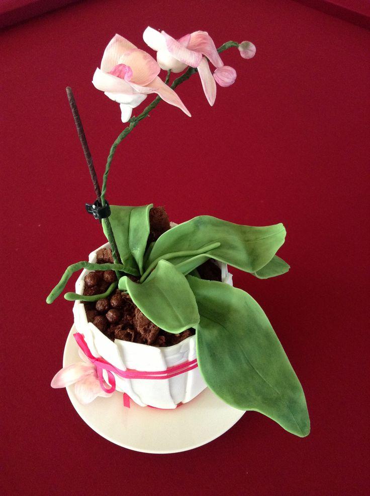 Míša dort, květiny i květináč z potahovací hmoty...
