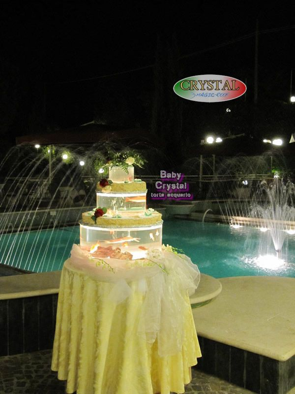 https://flic.kr/s/aHskqzq3cJ | festa di compleanno | Bellissime feste di compleanno a Roma. Ancora più speciali con la torta acquario.  Beautiful birthdays in Rome. Yet most special with aquarium cake.  www.magicreef.it