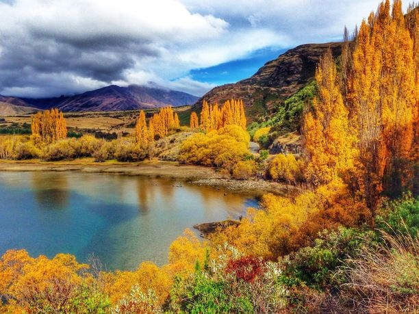 Wanaka, New Zealand — by YoungAdventuress. While most of New Zealand doesn't undergo drastic seasonal changes, the Otago region of the South Island does. In...