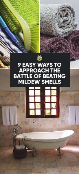 How To Get Rid Of Mildew Smell In Your House In 9 Easy Ways