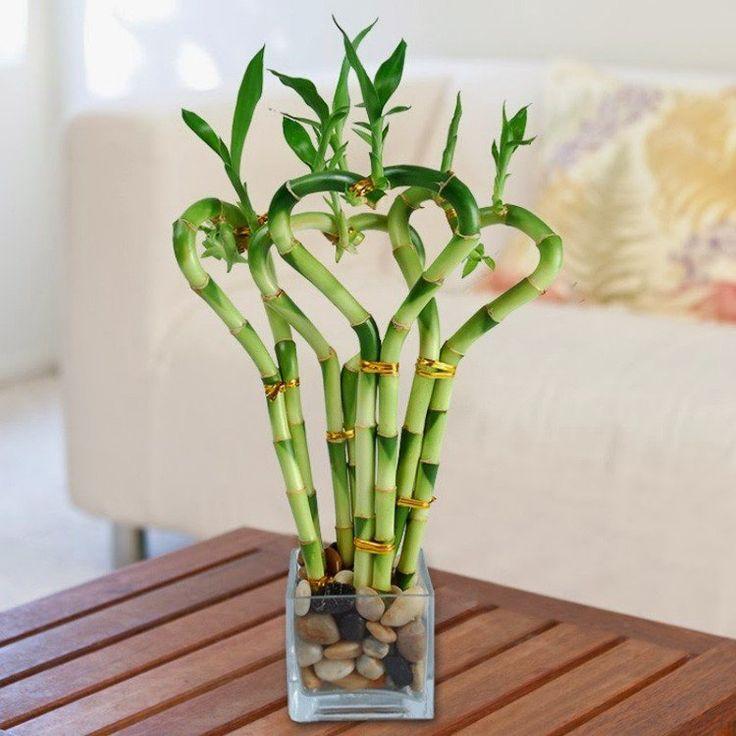 tiges de bambou en forme de coeurs, vase et galets