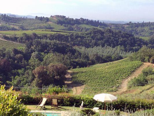 #tuscanycook panoramic pool and garden #contactus www.tuscanycook.com