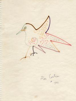 Cocteau Jean :  Oiseau