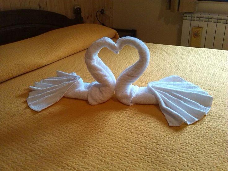 Esperienza stupenda: Bella la location all interno - Recensioni su Hotel Palaghiaccio - TripAdvisor