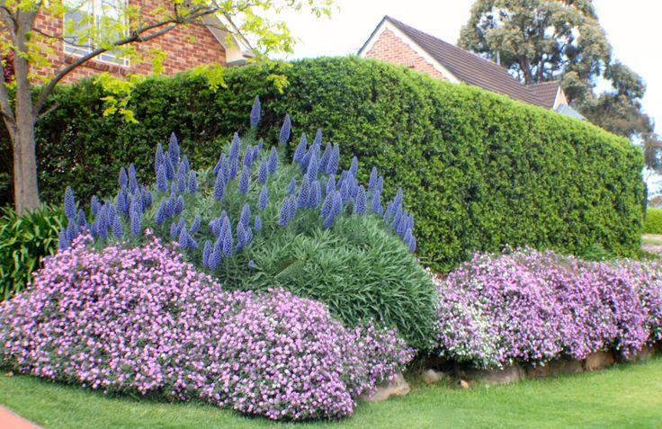 Spring Garden- Glenhaven