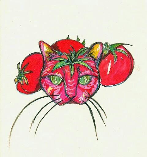 Pink tomate, opio en las nubes