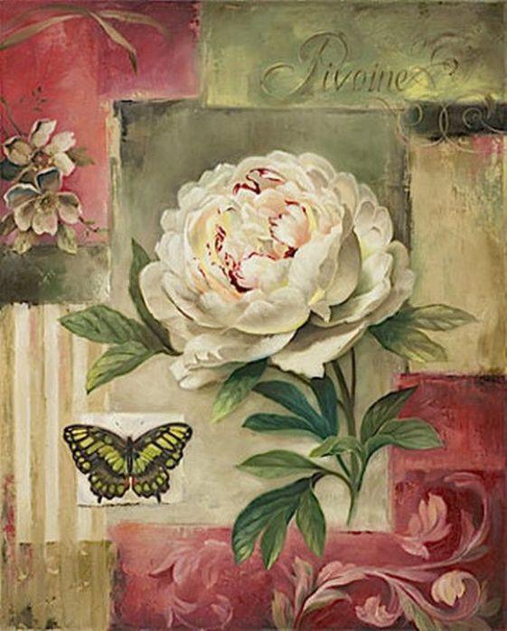 Flores borboleta