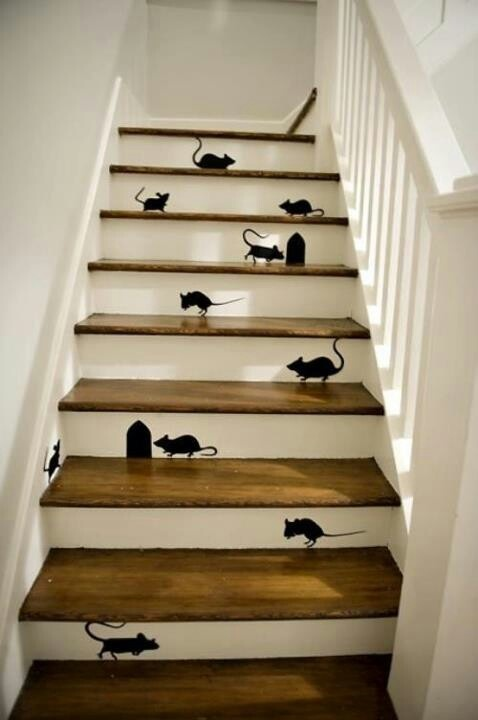 Mice in the house!!