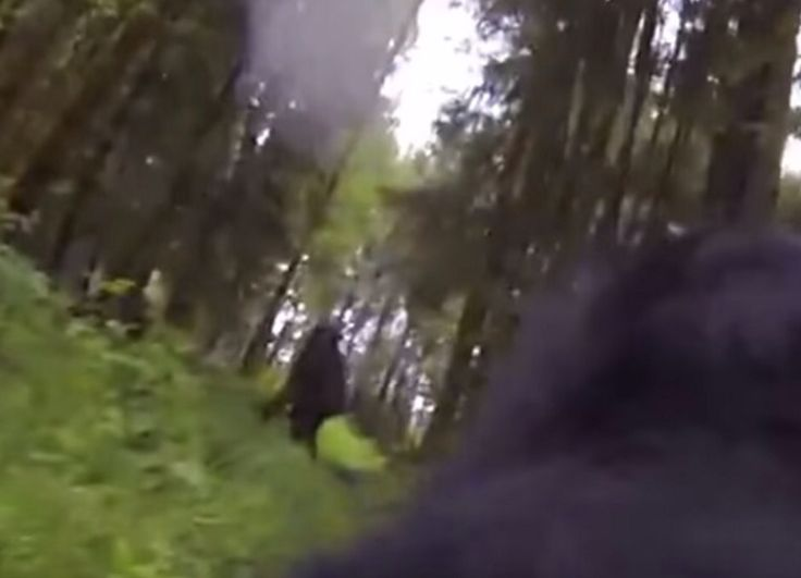 Dog in Oregon catches Bigfoot on a Go Pro Cam.
